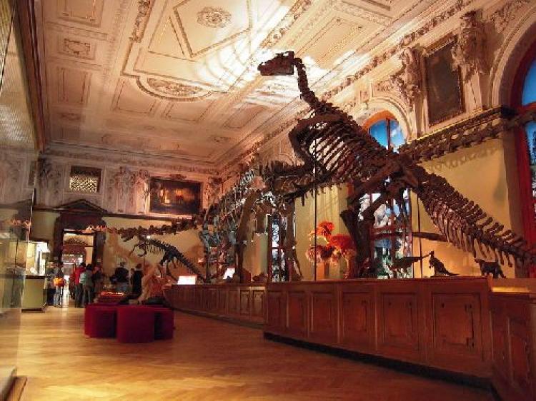 O lume minunata: cele mai interesante muzee din Romania